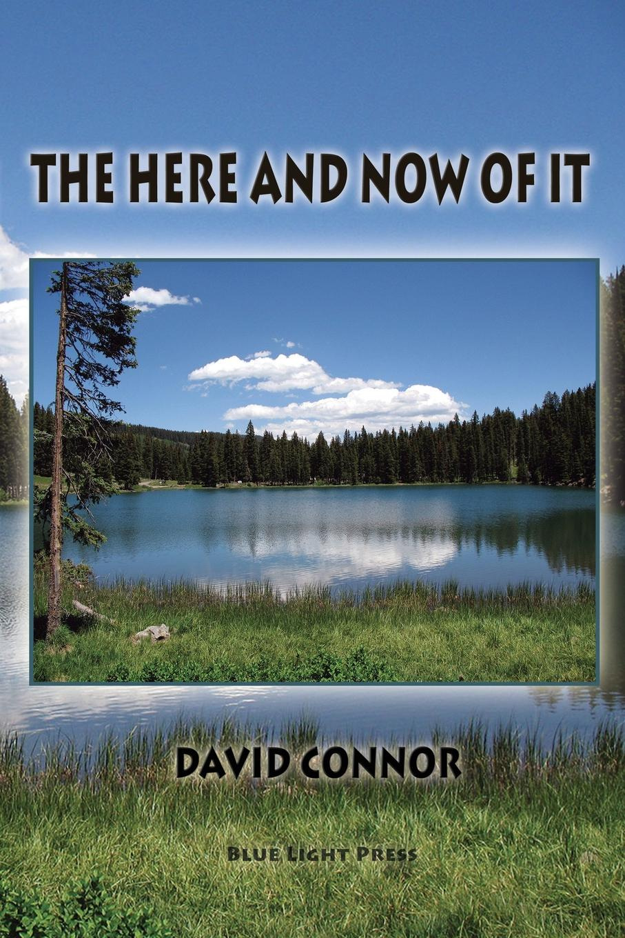 David Connor The Here and Now of It цена