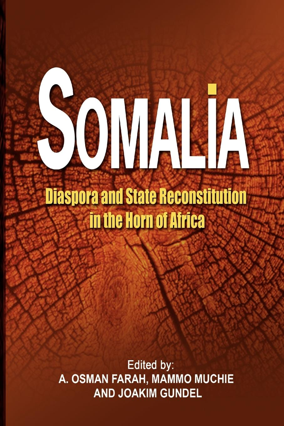 Somalia. Diaspora and State Reconstitution in the Horn of Africa godwin sadoh five decades of music transmutation in nigeria and the diaspora