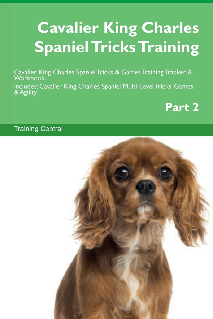 Training Central Cavalier King Charles Spaniel Tricks Training Cavalier King Charles Spaniel Tricks . Games Training Tracker . Workbook. Includes. Cavalier King Charles Spaniel Multi-Level Tricks, Games . Agility. Part 2 цена 2017