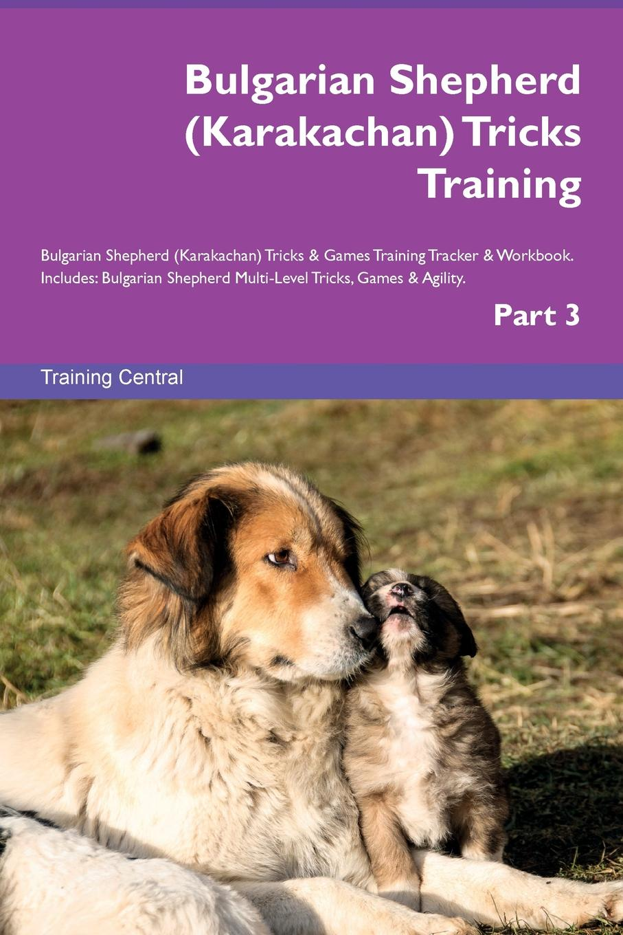 Training Central Bulgarian Shepherd (Karakachan) Tricks Training Bulgarian Shepherd (Karakachan) Tricks . Games Training Tracker . Workbook. Includes. Bulgarian Shepherd Multi-Level Tricks, Games . Agility. Part 3 шнур оптический соединительный sc lc upc sm 9 125 simplex 2 м