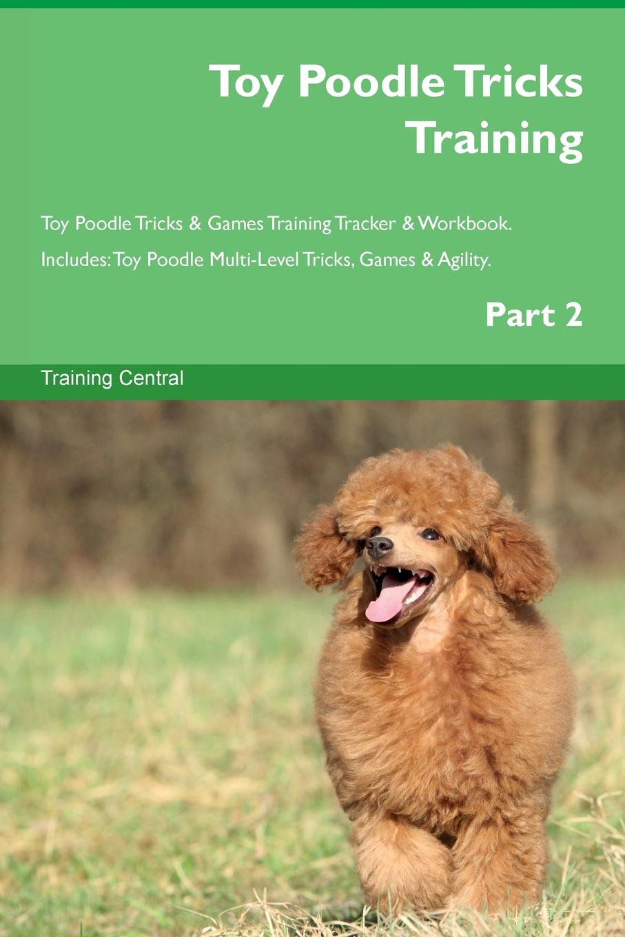 Training Central Toy Poodle Tricks Training Toy Poodle Tricks . Games Training Tracker . Workbook. Includes. Toy Poodle Multi-Level Tricks, Games . Agility. Part 2 candice guo plush toy stuffed doll cute verisimilitude poodle cute teddy dog puppy soft creative birthday gift christmas present