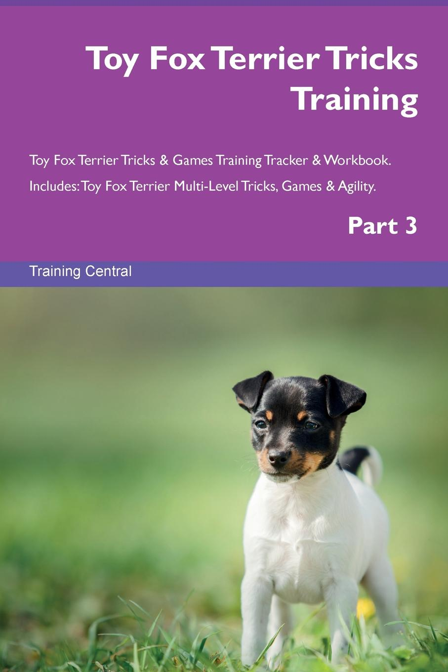 Training Central Toy Fox Terrier Tricks Training Toy Fox Terrier Tricks . Games Training Tracker . Workbook. Includes. Toy Fox Terrier Multi-Level Tricks, Games . Agility. Part 3 fox s book of martyrs