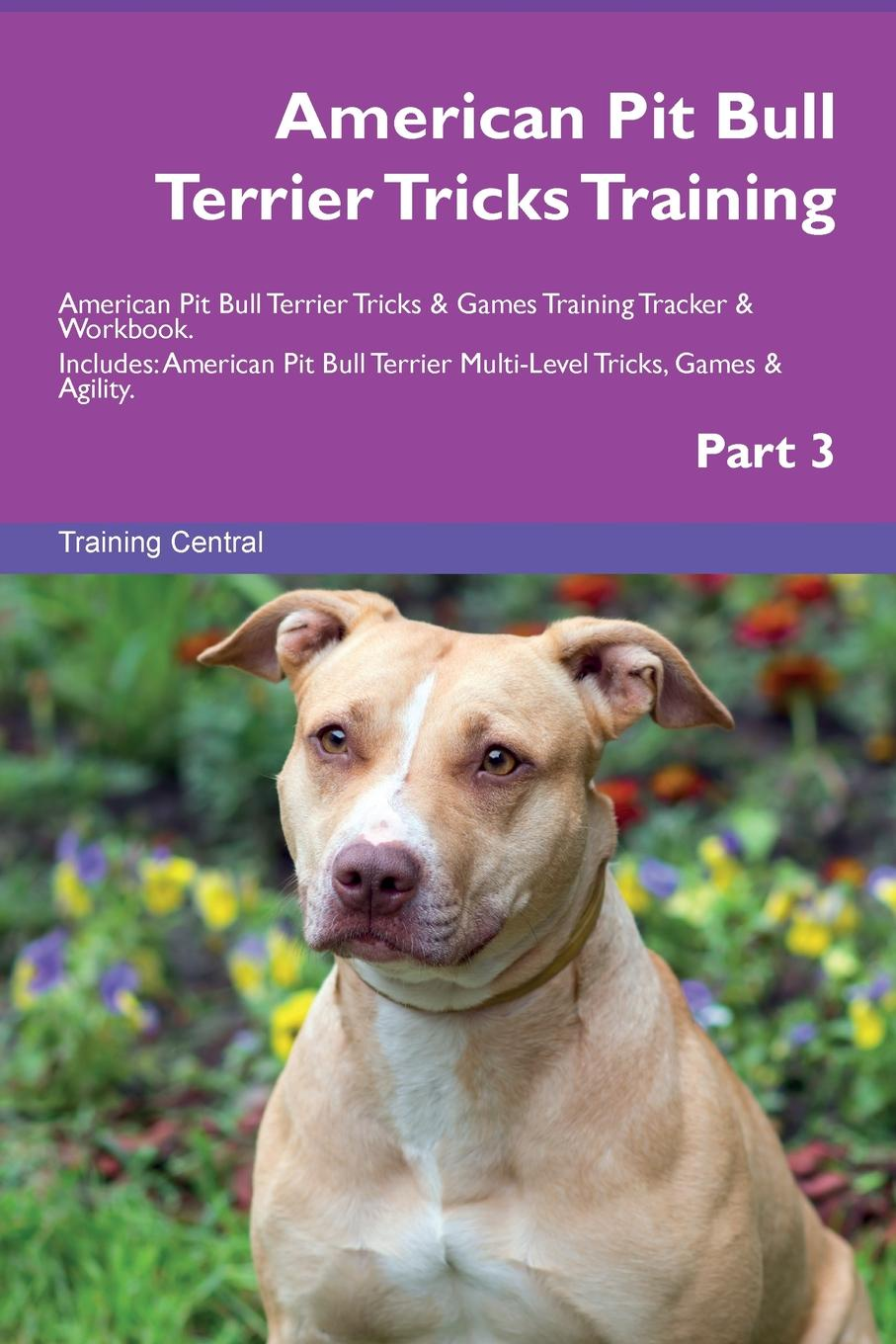 Training Central American Pit Bull Terrier Tricks Training American Pit Bull Terrier Tricks . Games Training Tracker . Workbook. Includes. American Pit Bull Terrier Multi-Level Tricks, Games . Agility. Part 3