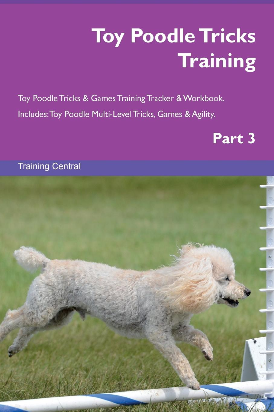Training Central Toy Poodle Tricks Training Toy Poodle Tricks . Games Training Tracker . Workbook. Includes. Toy Poodle Multi-Level Tricks, Games . Agility. Part 3 candice guo plush toy stuffed doll cute verisimilitude poodle cute teddy dog puppy soft creative birthday gift christmas present