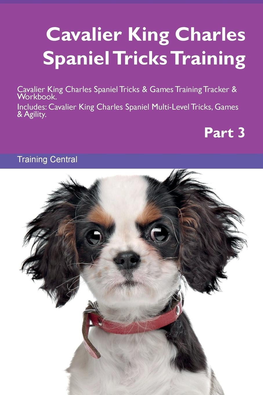 Training Central Cavalier King Charles Spaniel Tricks Training Cavalier King Charles Spaniel Tricks . Games Training Tracker . Workbook. Includes. Cavalier King Charles Spaniel Multi-Level Tricks, Games . Agility. Part 3 цена 2017