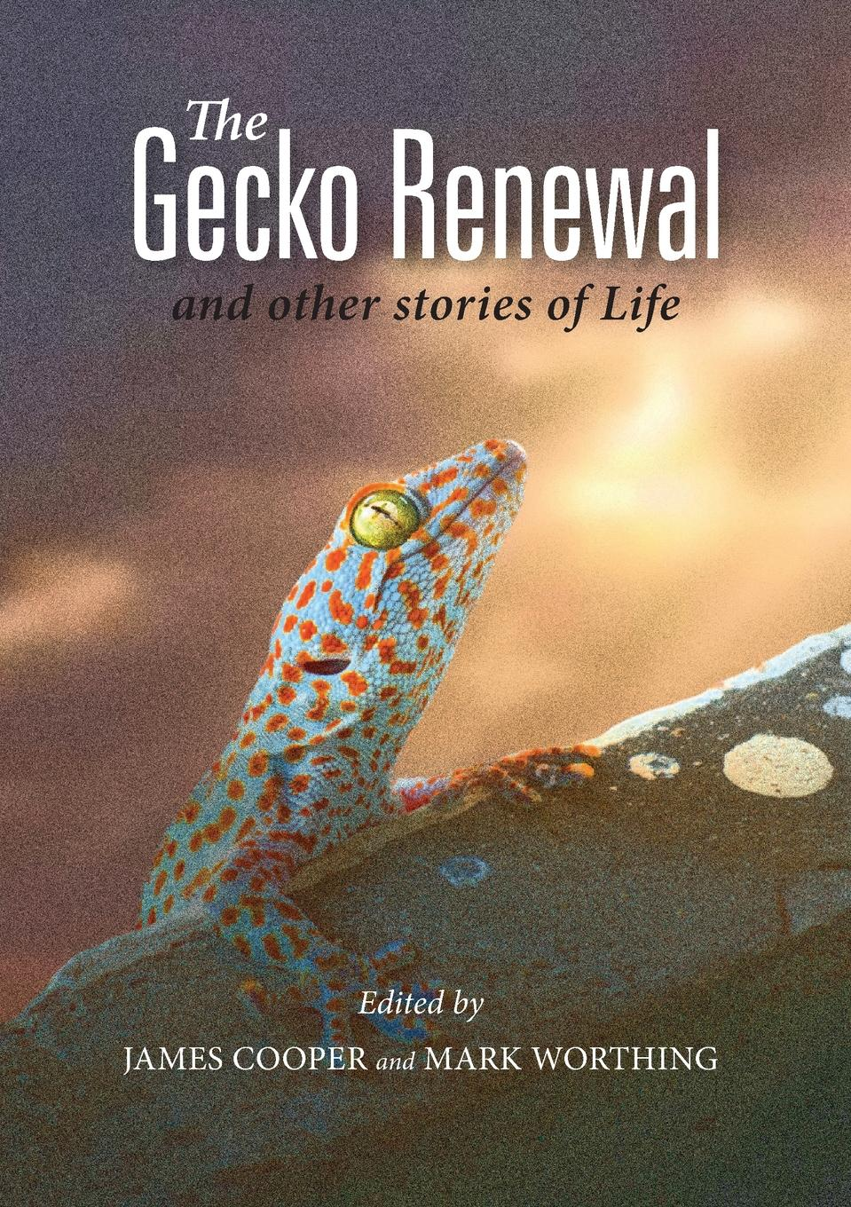 The Gecko Renewal. and other Stories of Life ordinary man extraordinary god