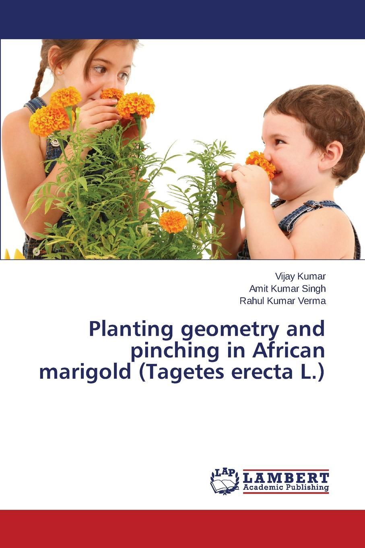 цена на Kumar Vijay, Singh Amit Kumar, Verma Rahul Kumar Planting Geometry and Pinching in African Marigold (Tagetes Erecta L.)
