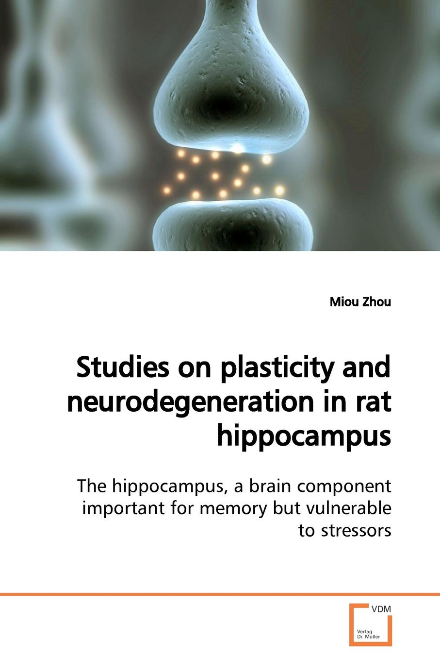 Miou Zhou Studies on plasticity and neurodegeneration in rat hippocampus storage of mango treated with calcium chloride