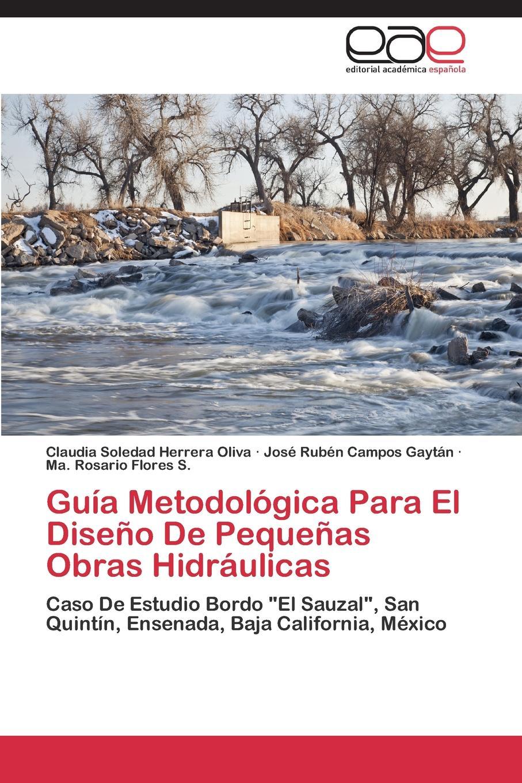 Herrera Oliva Claudia Soledad, Campos Gaytan Jose Ruben, Flores S. Ma Guia Metodologica Para El Diseno de Pequenas Obras Hidraulicas