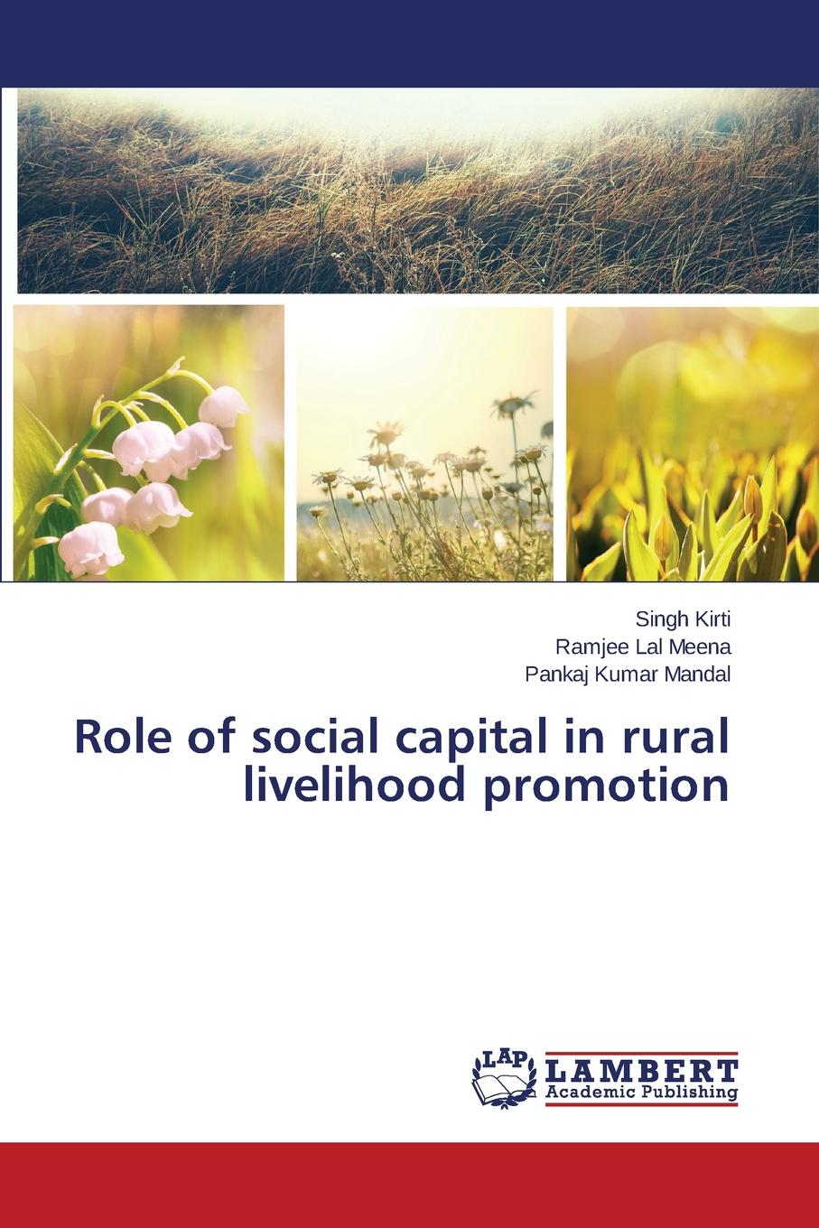 Kirti Singh, Meena Ramjee Lal, Mandal Pankaj Kumar Role of Social Capital in Rural Livelihood Promotion alok kumar and adam scott governance social and physical infrastructure and development