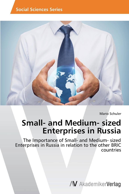 Schuler Mario Small- and Medium- sized Enterprises in Russia socio economic determinants of performance of smes
