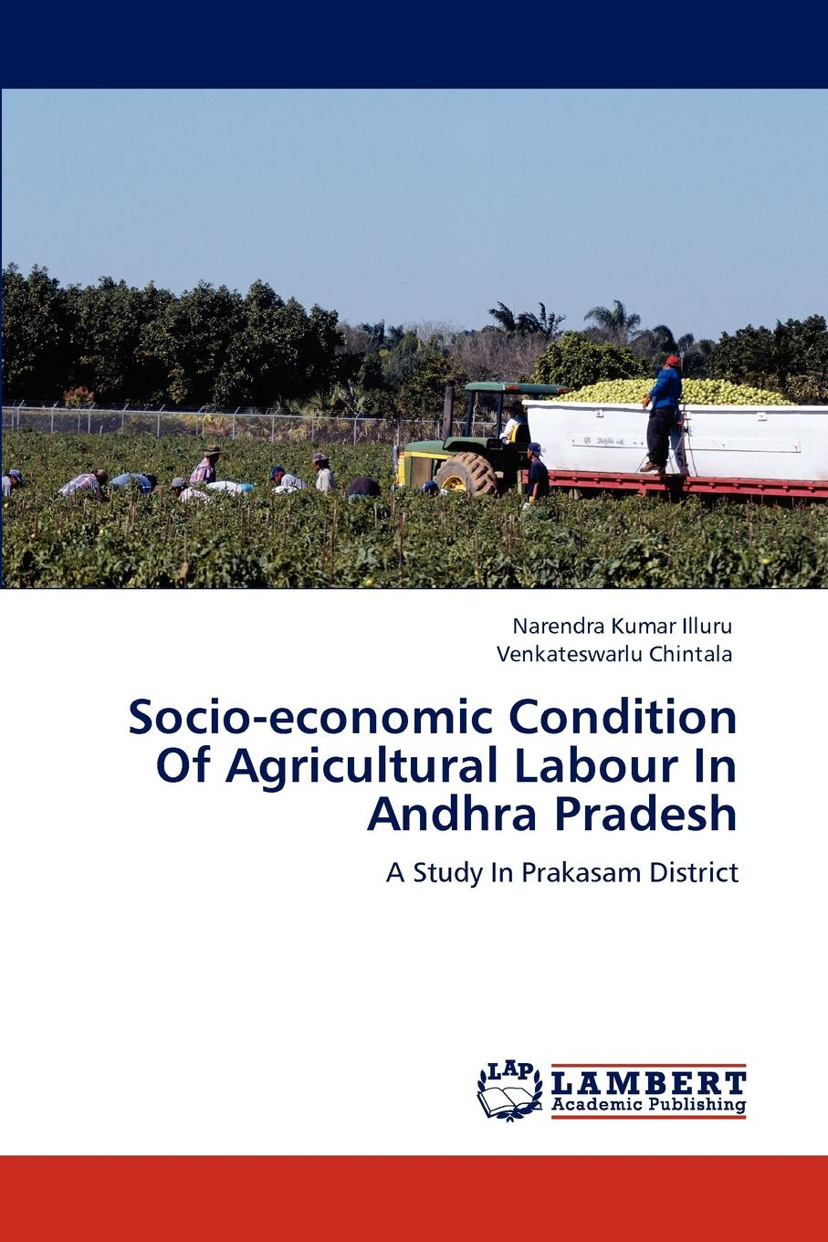Narendra Kumar Illuru, Venkateswarlu Chintala Socio-economic Condition Of Agricultural Labour In Andhra Pradesh недорго, оригинальная цена