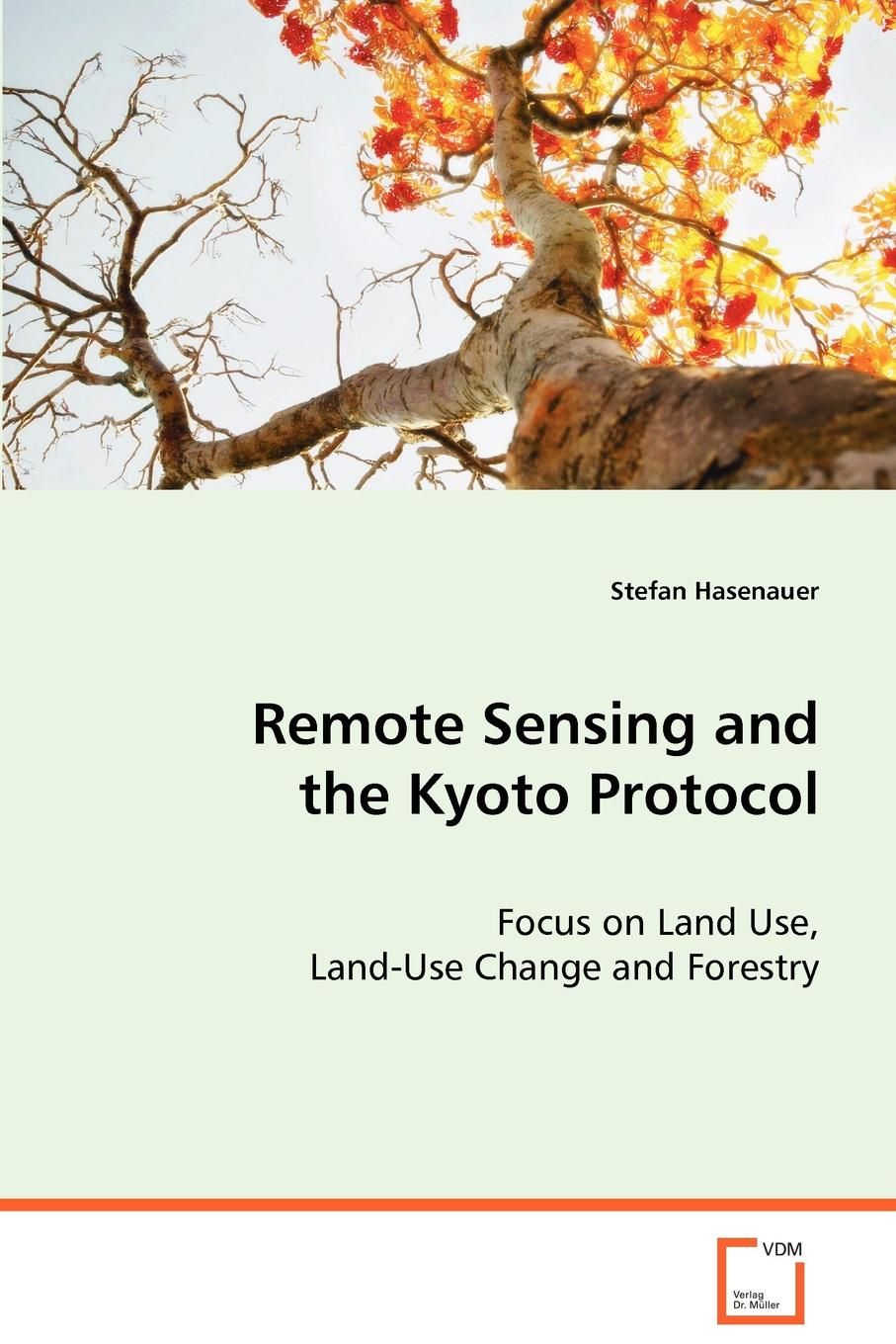 Stefan Hasenauer Remote Sensing and the Kyoto Protocol цены