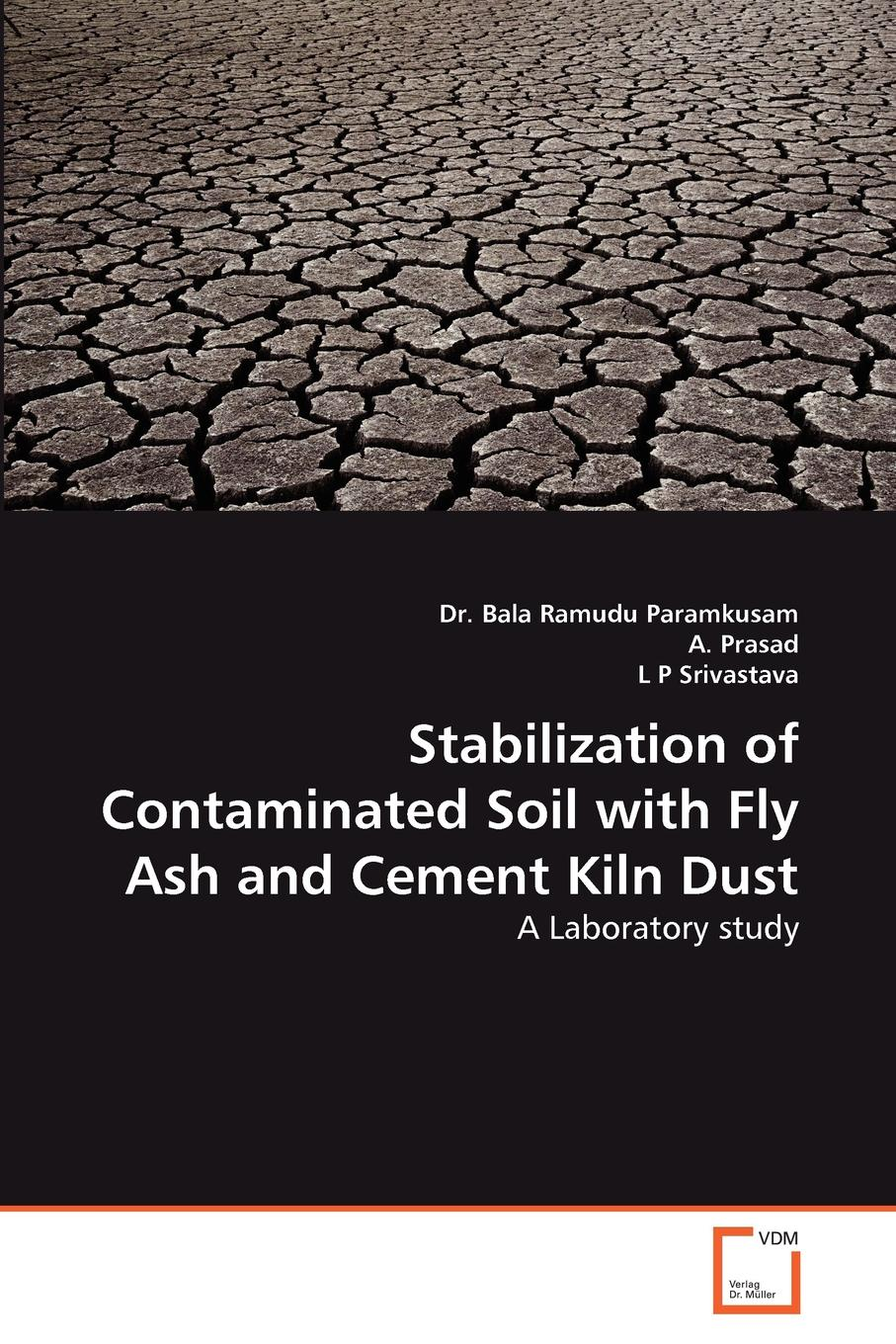 Bala Ramudu Paramkusam, A. Prasad, L. P. Srivastava Stabilization of Contaminated Soil with Fly Ash and Cement Kiln Dust turgenev i virgin soil