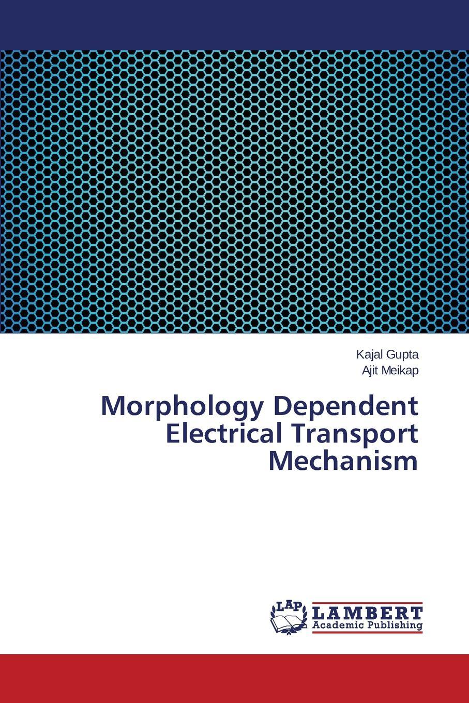 Gupta Kajal, Meikap Ajit Morphology Dependent Electrical Transport Mechanism transport phenomena in porous media iii