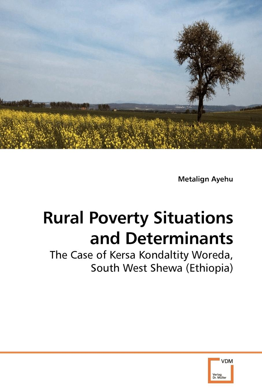 Metalign Ayehu Rural Poverty Situations and Determinants portraits of poverty