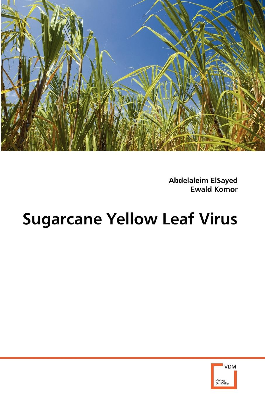 Abdelaleim ElSayed, Ewald Komor Sugarcane Yellow Leaf Virus elsayed elsayed a reliability engineering