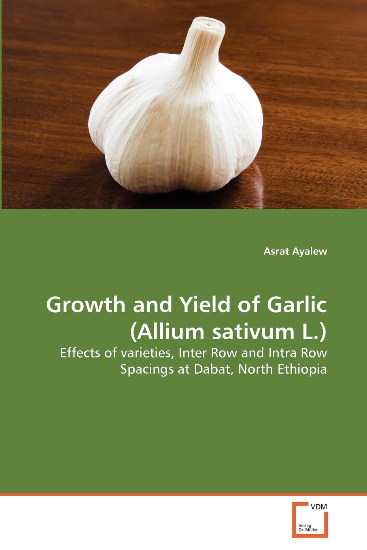 Asrat Ayalew Growth and Yield of Garlic (Allium sativum L.) недорго, оригинальная цена