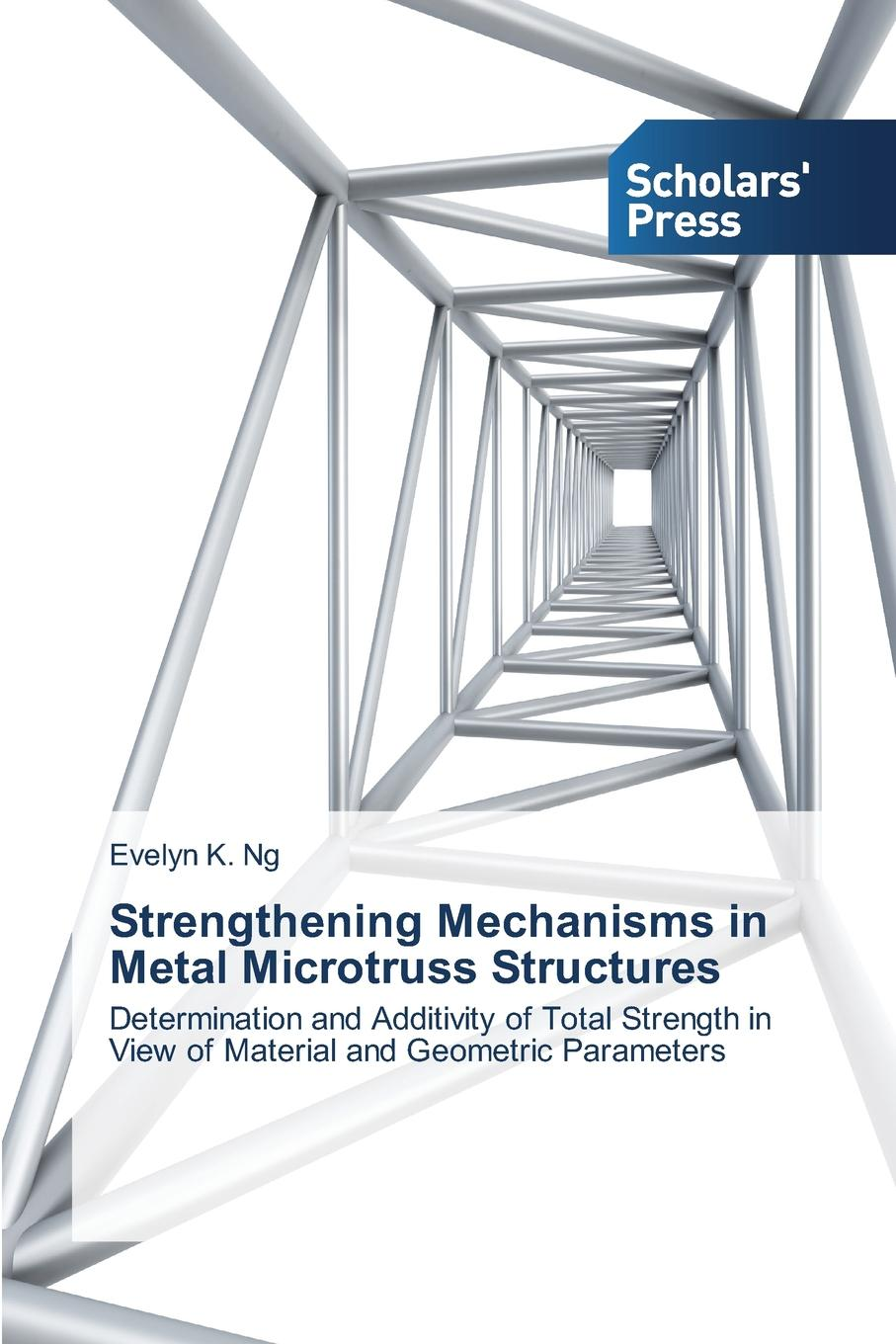Ng Evelyn K. Strengthening Mechanisms in Metal Microtruss Structures