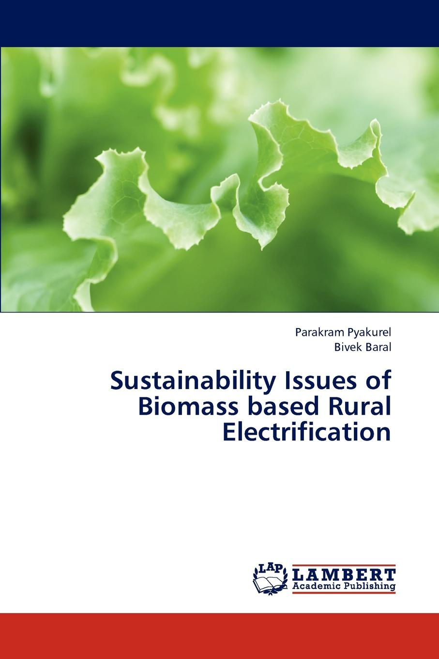 Pyakurel Parakram, Baral Bivek Sustainability Issues of Biomass Based Rural Electrification wu ying acid gas injection and related technologies