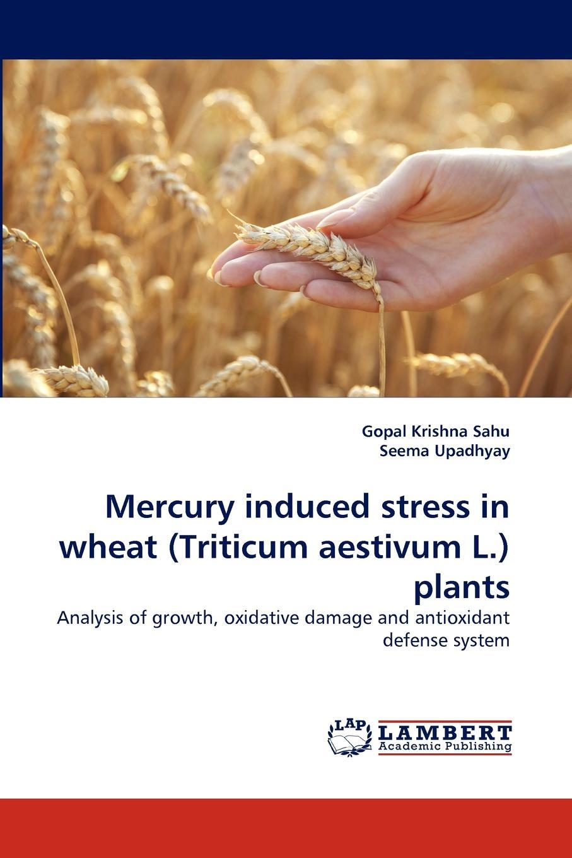 Gopal Krishna Sahu, Seema Upadhyay Mercury induced stress in wheat (Triticum aestivum L.) plants seema kumari antioxidant activity of glycosmis mauritiana and streblus asper