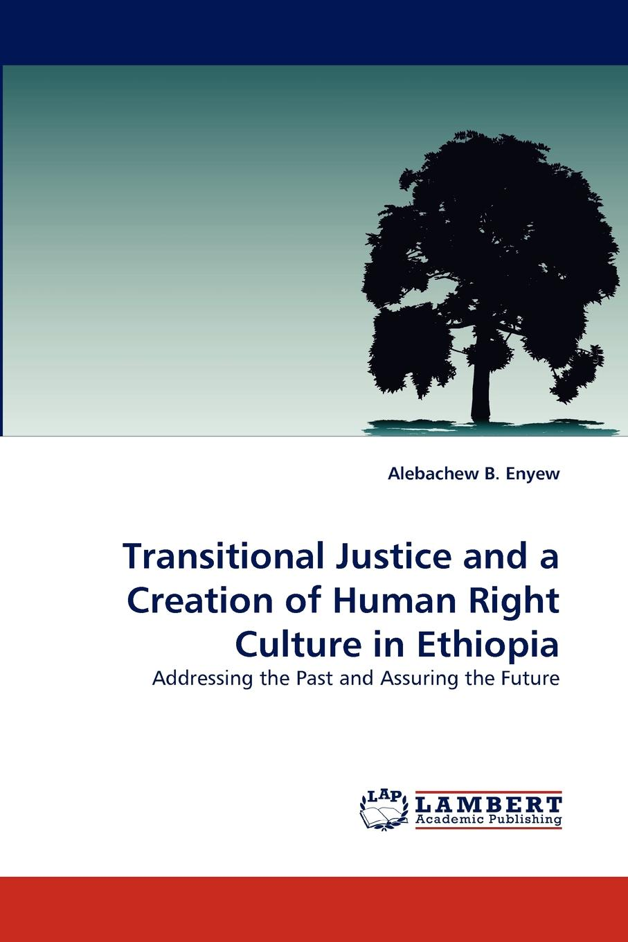 Alebachew B. Enyew Transitional Justice and a Creation of Human Right Culture in Ethiopia цена