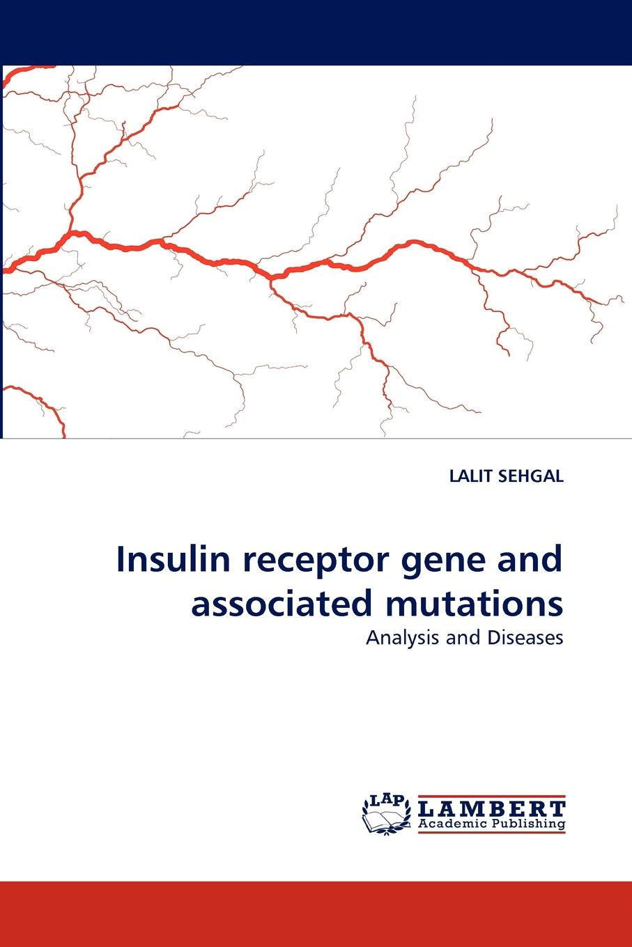 LALIT SEHGAL Insulin receptor gene and associated mutations oxygen consumption with cell function and insulin sensitivity