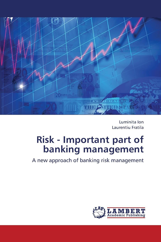 Ion Luminita, Fratila Laurentiu Risk - Important Part of Banking Management banks i the bridge