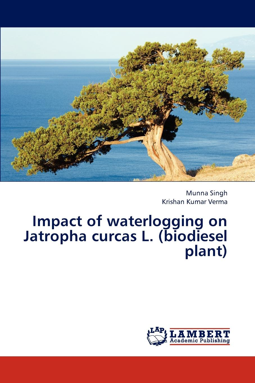 цены на Singh Munna, Verma Krishan Kumar Impact of waterlogging on Jatropha curcas L. (biodiesel plant)  в интернет-магазинах