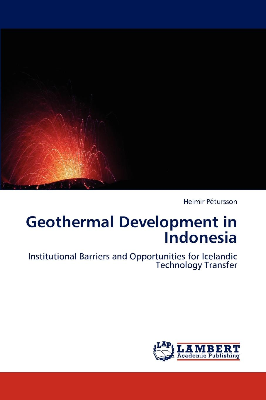 Heimir P. Tursson, Heimir Petursson Geothermal Development in Indonesia цена