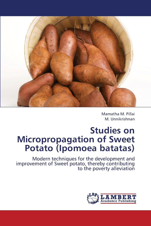 M. Pillai Mamatha, Unnikrishnan M. Studies on Micropropagation of Sweet Potato (Ipomoea Batatas) недорго, оригинальная цена