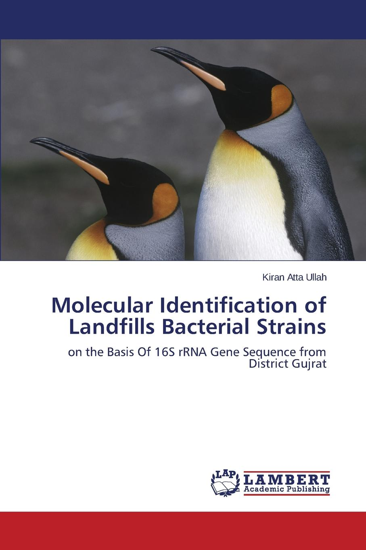 Atta Ullah Kiran Molecular Identification of Landfills Bacterial Strains недорго, оригинальная цена