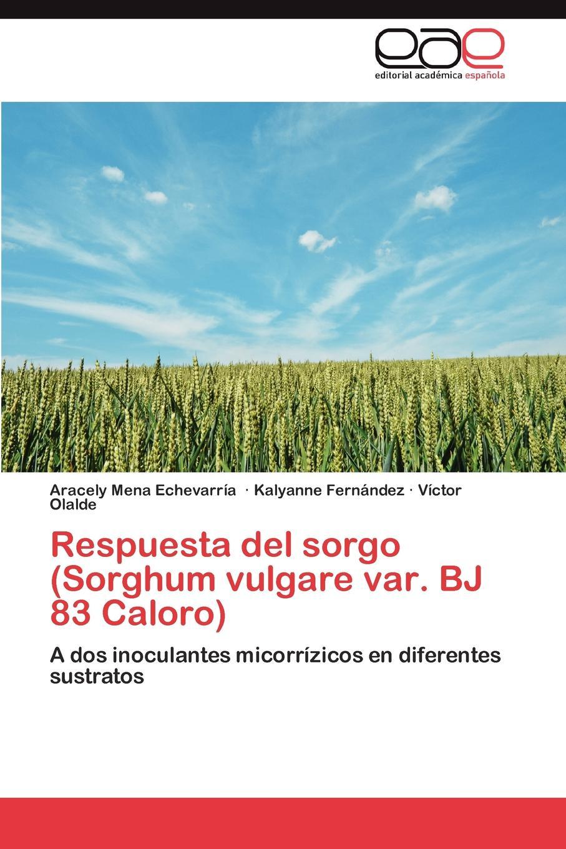 Mena Echevarría Aracely, Fernández Kalyanne, Olalde Víctor Respuesta del sorgo (Sorghum vulgare var. BJ 83 Caloro)