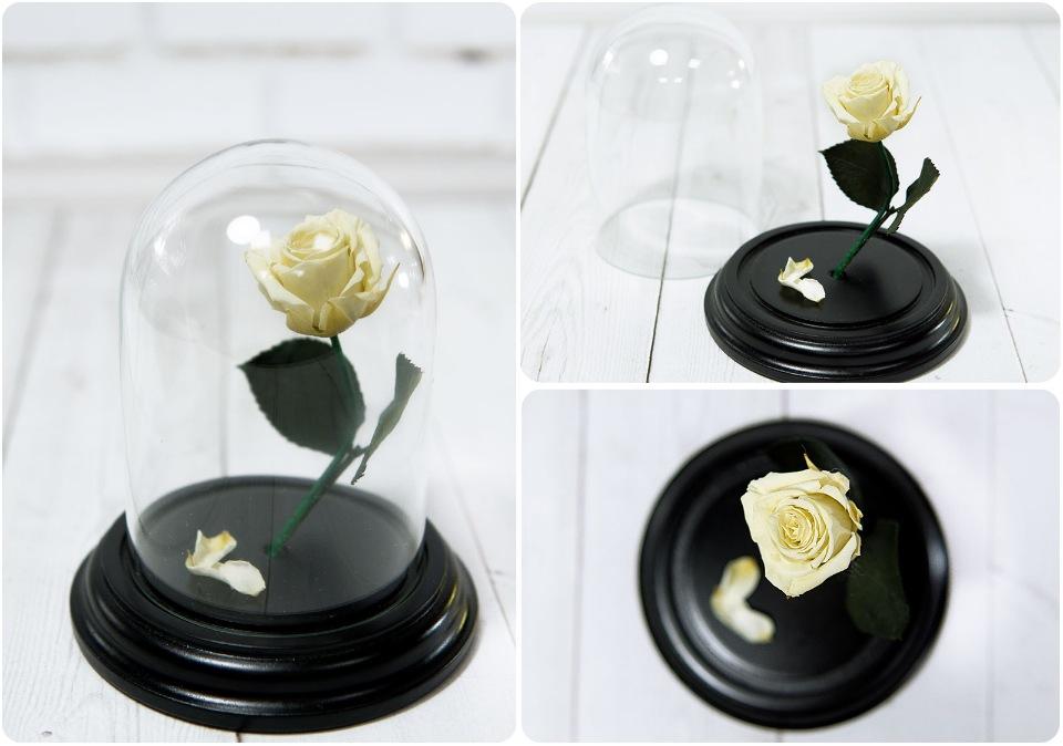 Сувенирный набор Роза в колбе №1 Ивори ароматерапия запах розы