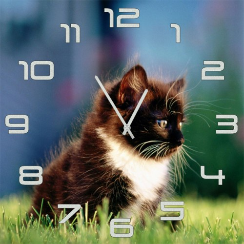 Настенные часы Kitch Clock 3001846 часы настенные miolla котик