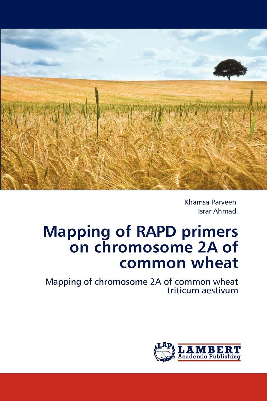 Khamsa Parveen, Israr Ahmad Mapping of RAPD primers on chromosome 2A of common wheat цена