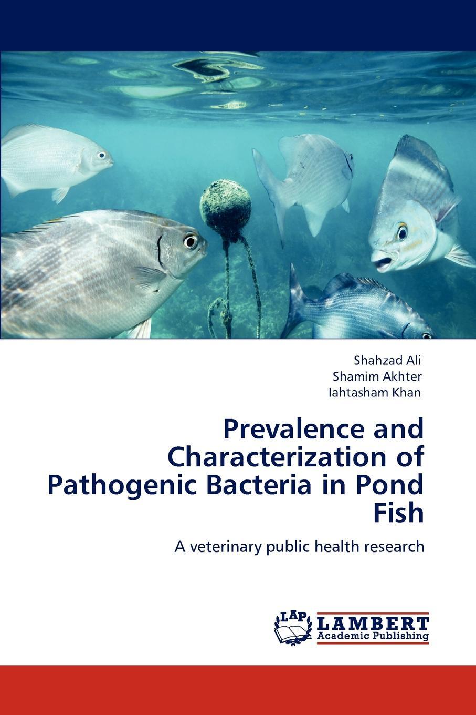 купить Shahzad Ali, Shamim Akhter, Iahtasham Khan Prevalence and Characterization of Pathogenic Bacteria in Pond Fish по цене 8789 рублей