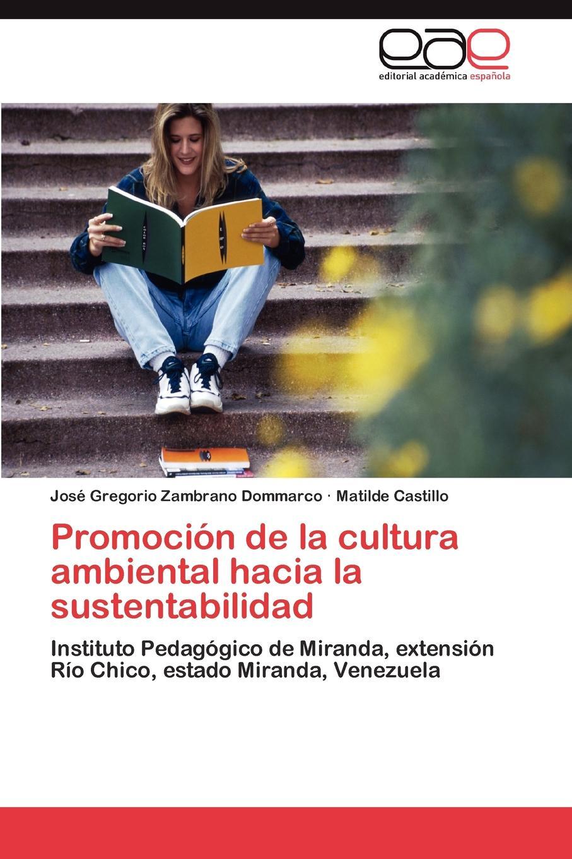 Zambrano Dommarco José Gregorio, Castillo Matilde Promocion de la cultura ambiental hacia la sustentabilidad antonio tadeo abche mor n venezuela y el salto tecnologico en la relacion bilateral con china