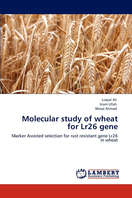 Liaqat Ali, Inam Ullah, Wesal Ahmad Molecular Study of Wheat for Lr26 Gene цена