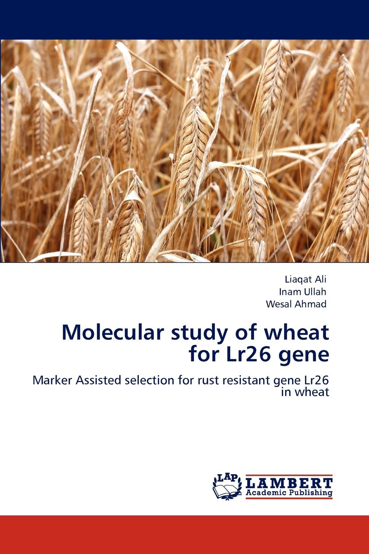 цены на Liaqat Ali, Inam Ullah, Wesal Ahmad Molecular Study of Wheat for Lr26 Gene  в интернет-магазинах