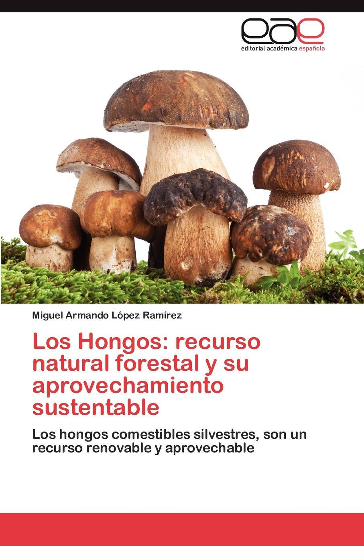 López Ramírez Miguel Armando Los Hongos. recurso natural forestal y su aprovechamiento sustentable los otros los otros kapsbergiana