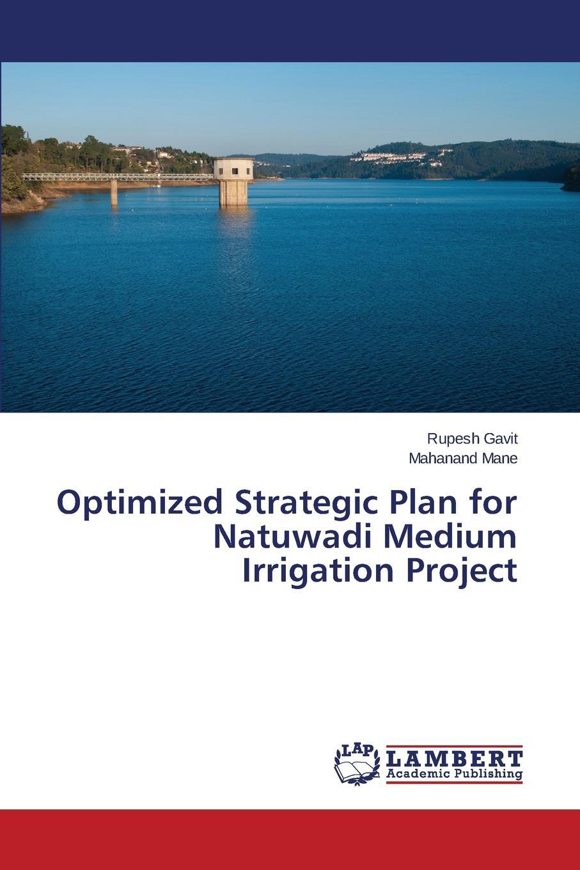 цены на Gavit Rupesh, Mane Mahanand Optimized Strategic Plan for Natuwadi Medium Irrigation Project  в интернет-магазинах
