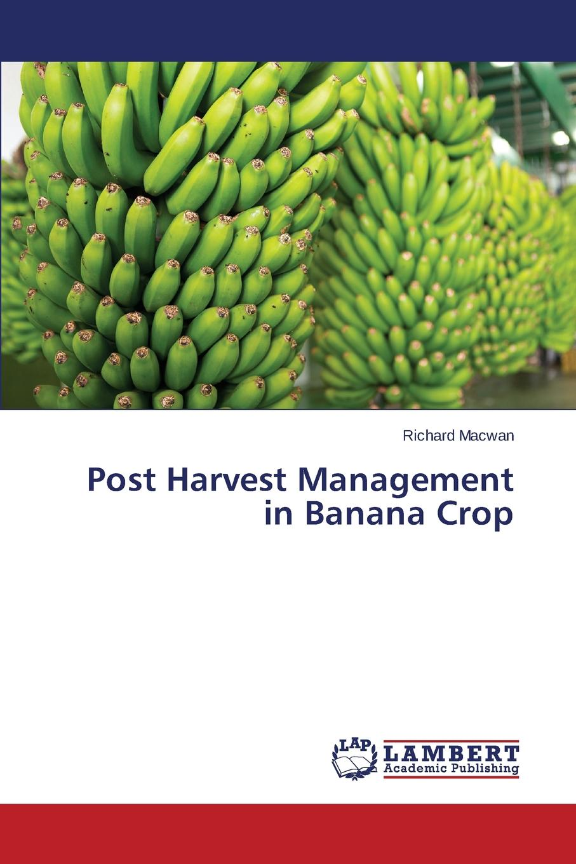 Macwan Richard Post Harvest Management in Banana Crop 4pcs 2 pairs speaker amplifier terminal binding post banana plugs socket female connector durable