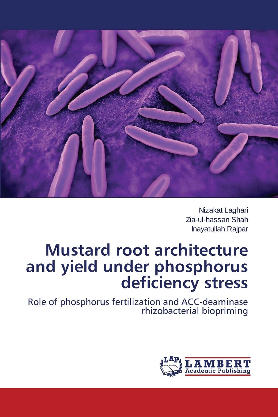 Laghari Nizakat, Shah Zia-ul-hassan, Rajpar Inayatullah Mustard root architecture and yield under phosphorus deficiency stress недорго, оригинальная цена