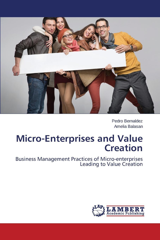 Bernaldez Pedro, Balasan Amelia Micro-Enterprises and Value Creation jennifer meyer decision quality value creation from better business decisions