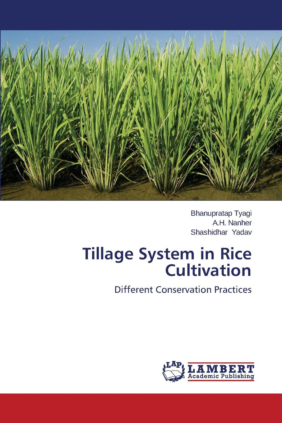 Tyagi Bhanupratap, Nanher A.H., Yadav Shashidhar Tillage System in Rice Cultivation bio fertilization for rice and residual effect on sequent crop