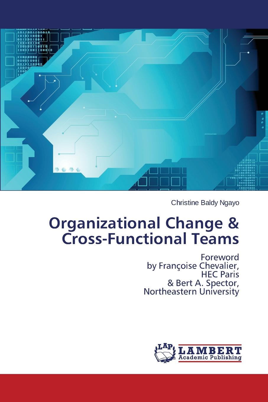 Baldy Ngayo Christine Organizational Change . Cross-Functional Teams alan weiss organizational consulting how to be an effective internal change agent