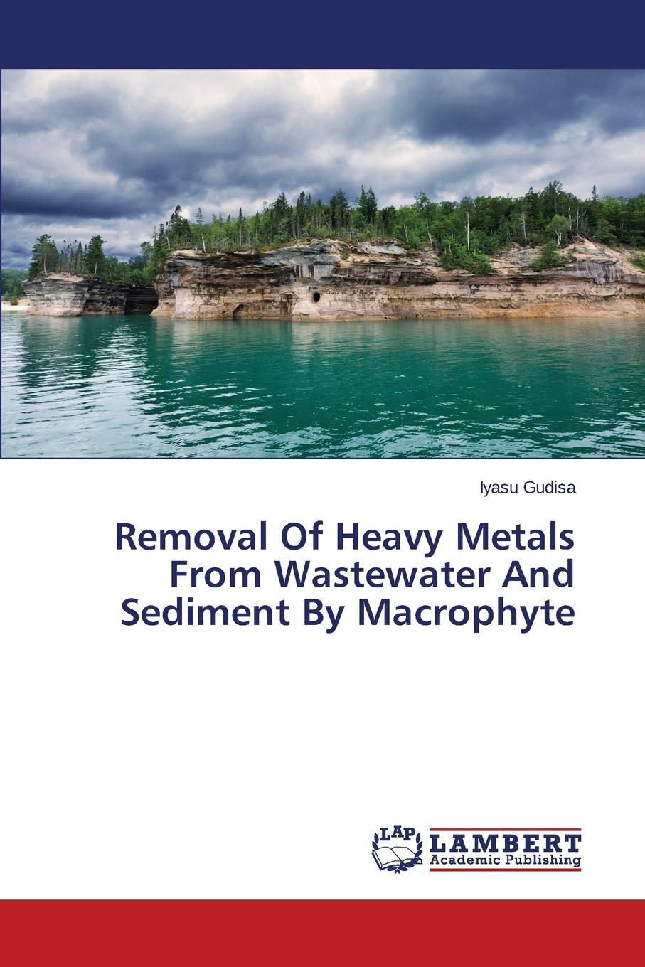 где купить Gudisa Iyasu Removal Of Heavy Metals From Wastewater And Sediment By Macrophyte дешево