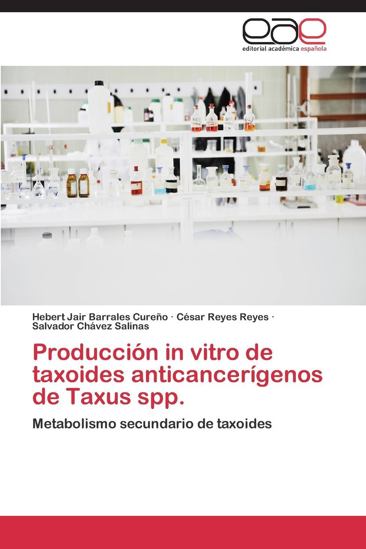Barrales Cureño Hebert Jair, Reyes Reyes César, Chávez Salinas Salvador Produccion in vitro de taxoides anticancerigenos de Taxus spp.