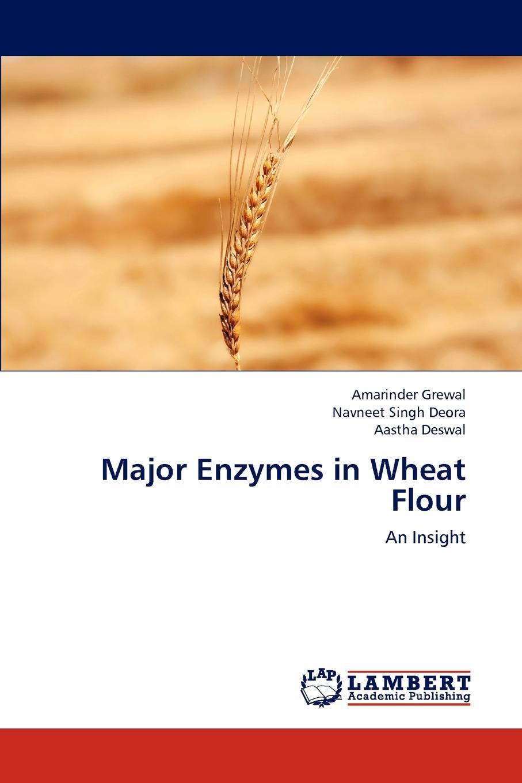 Amarinder Grewal, Navneet Singh Deora, Aastha Deswal Major Enzymes in Wheat Flour цена